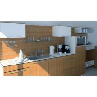 Küchenzeile mit Orgawand und Hängeschränken